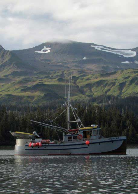 MV Auklet , Prince William Sound, Alaska